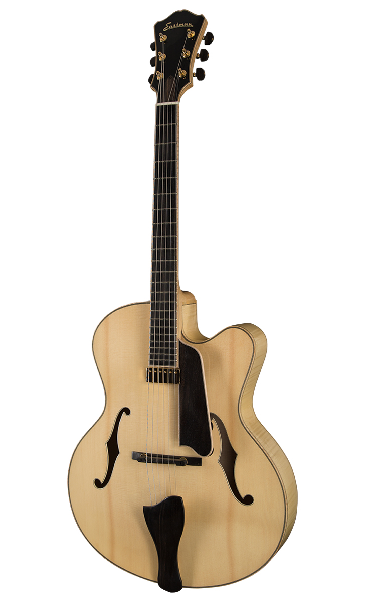Guitar_AR910CE-BD_Archtop_Front_0815.jpg