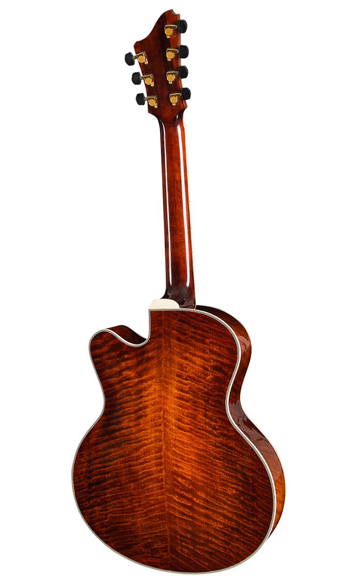 Guitar_AR810CE-7_Archtop_Back_0815.jpg