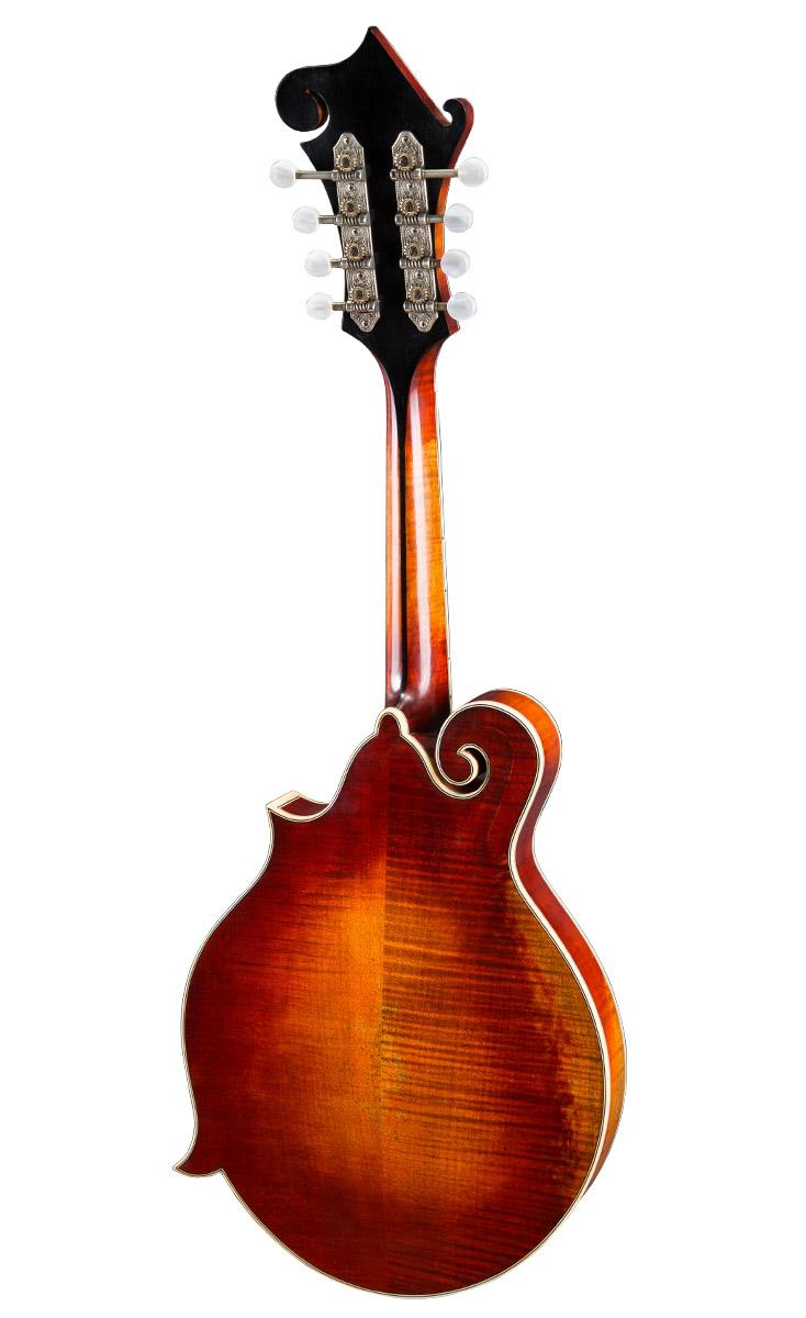 Mandolin_MD815-v_F-Style_Back_1216.jpg