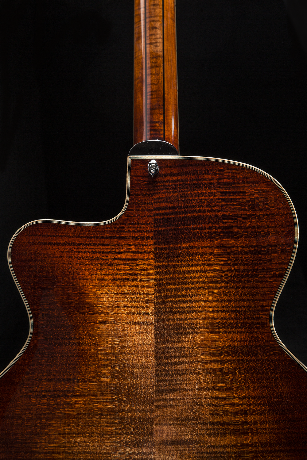 Eastman Custom Edition
