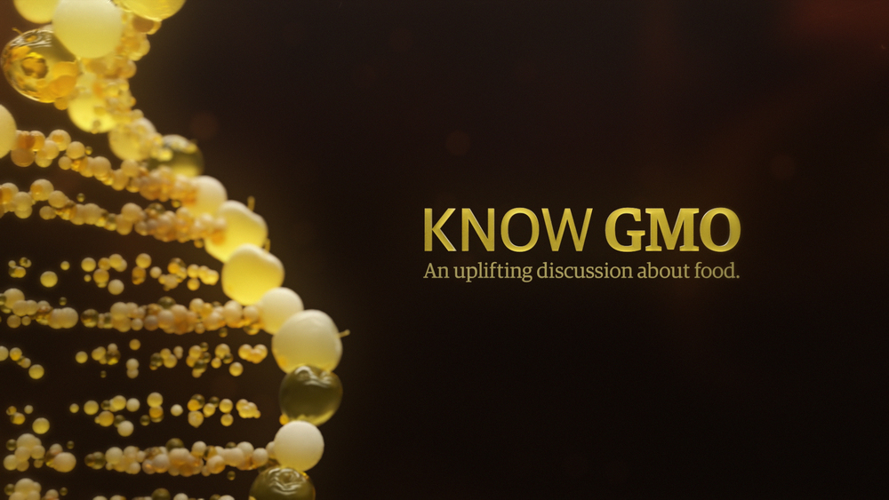KnowGMO ART DIRECTION / ANIMATION
