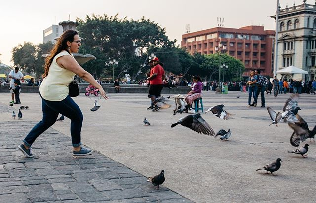 Here is @gabbylucci. A friend of the collective and a child at heart. Thanks for showing us all the hot spots of Guate! . 📸@beaudoesgo #guatemala #guatemalacity #guate #travel #childatheart #chica #pidgeon #fortheloveofcoffee