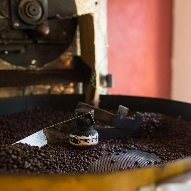 Remembering the amazing natural processed coffees of Finca El Pillon in Tarrazu, Costa Rica.  They have their hands in just about every step of the process, including roasting for local consumption. . 📸@beaudoesgo #roasting #coffee #costarica #puravida #fortheloveofcoffee #coffeelove #coffeefarm #elpilon #tarrazu #travel #documentary #filmdecafe