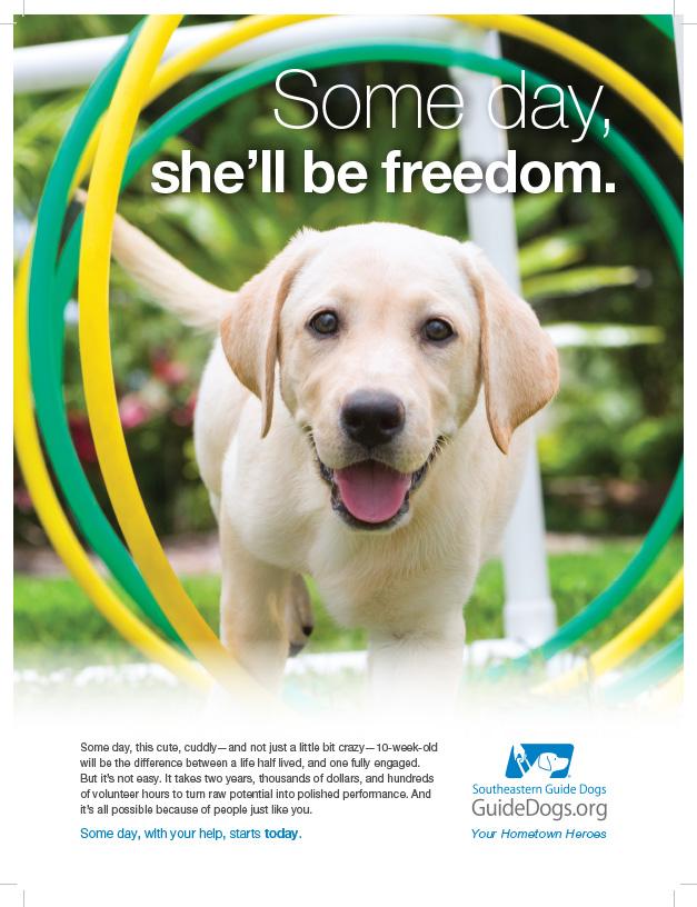 Southeastern Guide Dogs - Freedom - Sarasota Magazine.jpg