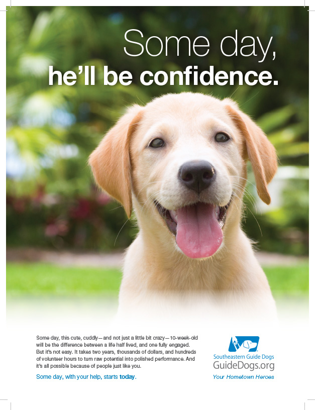 Southeastern Guide Dogs-CONFIDENCE-Sarasota Magazine_November.jpg