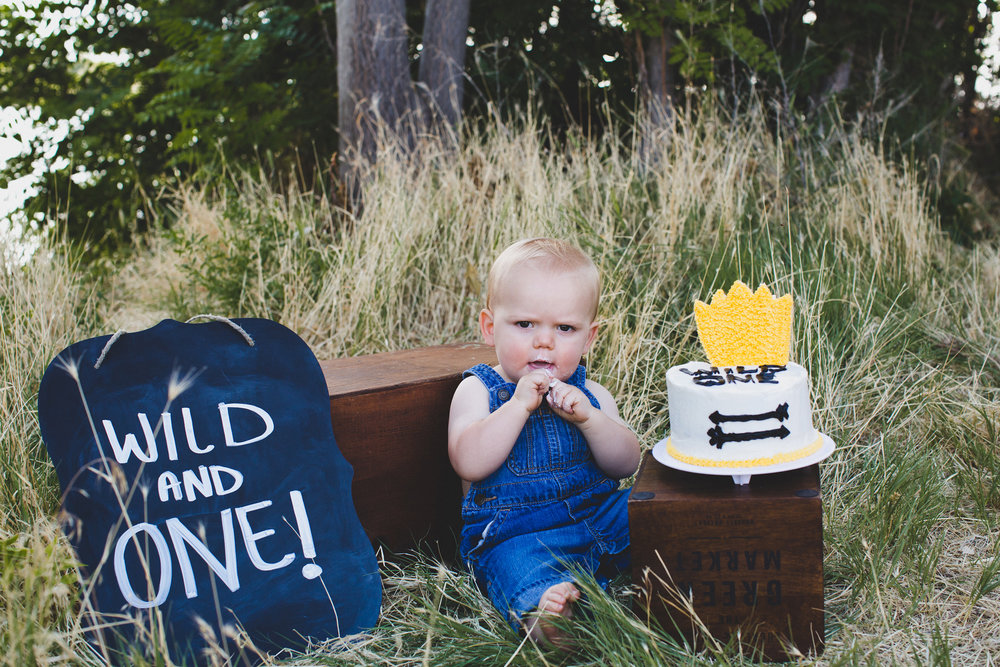 Kennewick family photos_Kennewick children photos_one year old photos_cake smash_baby photos_outdoor photo session_where the wild things are_Jordan Edens Photography_JEP_2