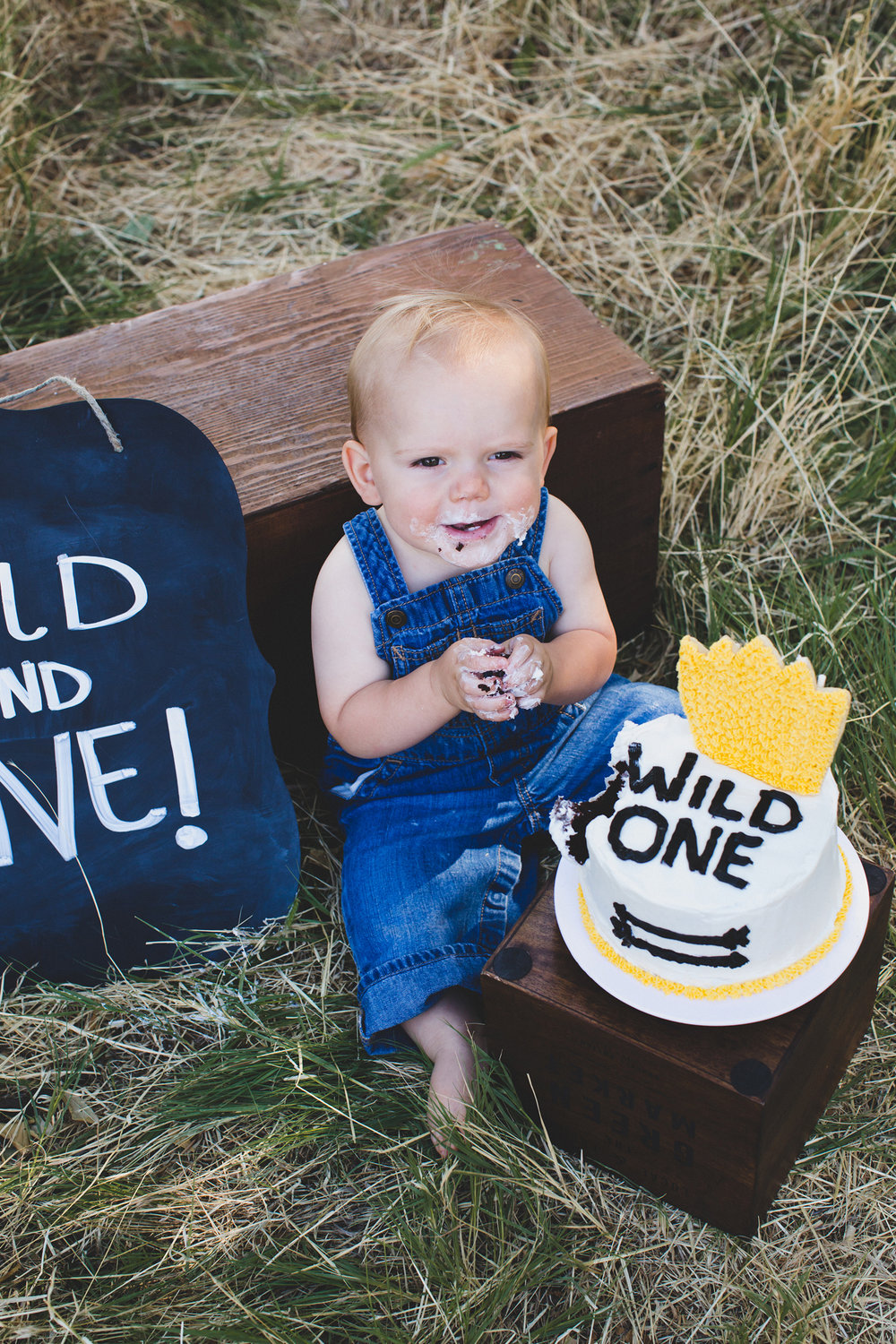 Kennewick family photos_Kennewick children photos_one year old photos_cake smash_baby photos_outdoor photo session_where the wild things are_Jordan Edens Photography_JEP_9