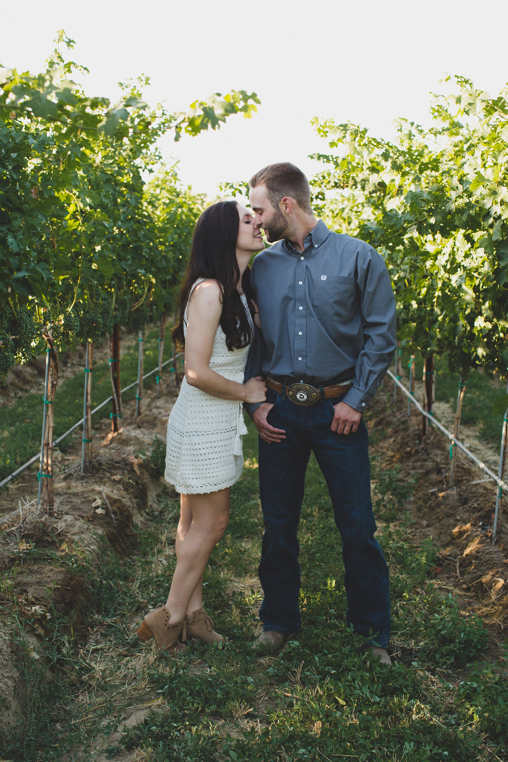 Tri Cities sunset engagement session_desert engagement_Vineyard engagement_Jordyn and Drew_Jordan Edens Photography_JEP_Grape vines_7