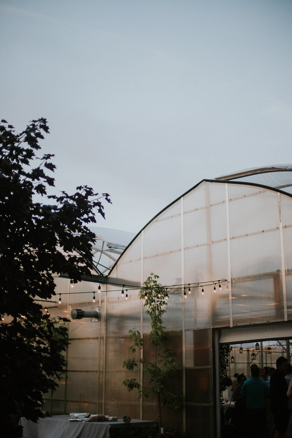 Wedding reception in a greenhouse | Keila Marie Photography | Manitoba Wedding Photographer