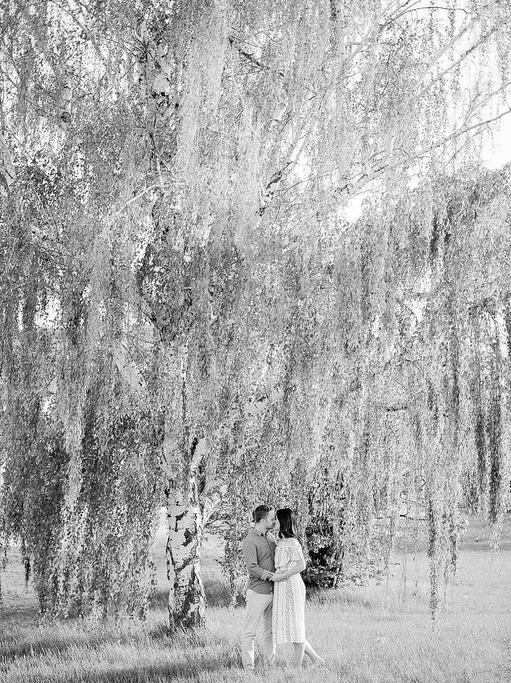 Weeping Birch Tree Engagement Photos, Fine Art Film Wedding Photographer, Canadian Wedding Photographer, Calgary Wedding Photographer, Winnipeg Wedding Photographer