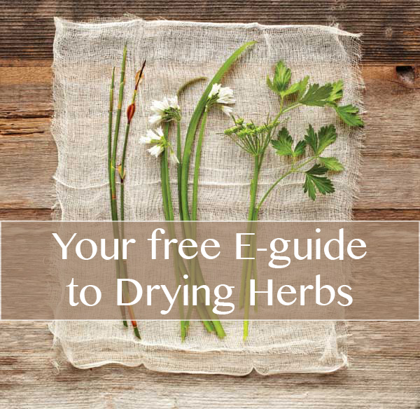 We would love to give you a free gift! Click on the picture above to download your FREE E-guide to drying Herbs.