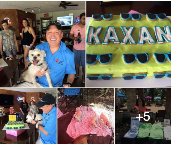 Kaxan Rescue Party 2015 @ the DogHouse.