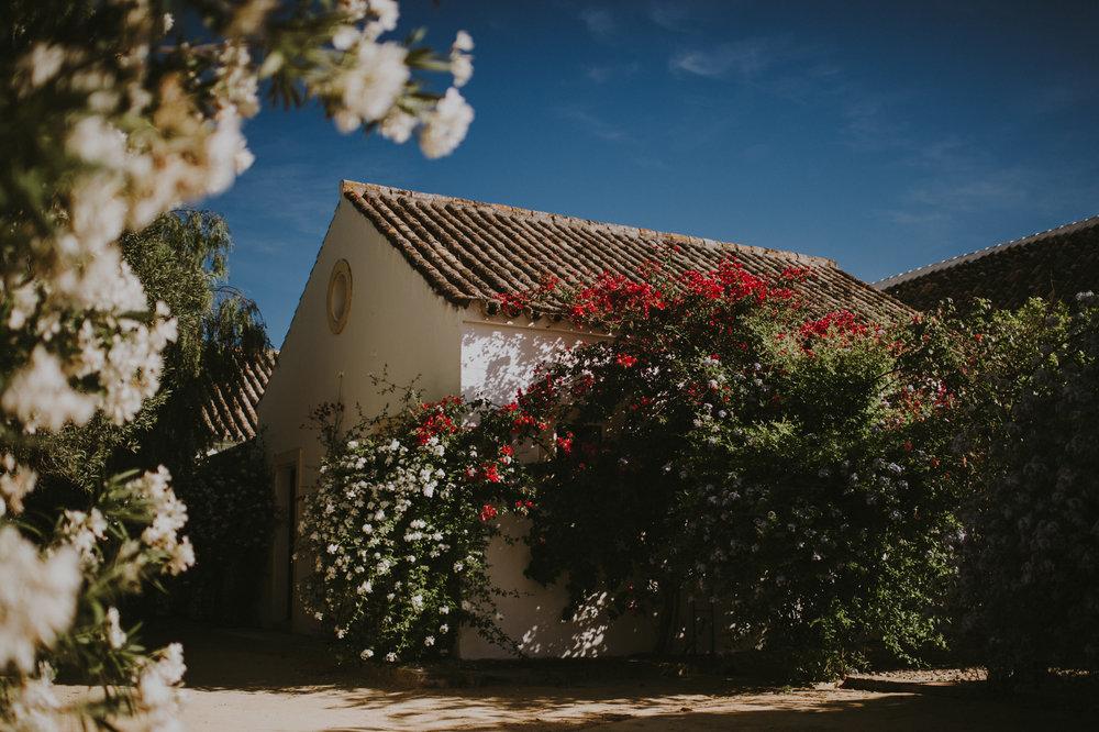 Andres+Amarillo+fotografo+boda+sevilla+natural+sin+poses+hacienda+san+rafael (2).JPG