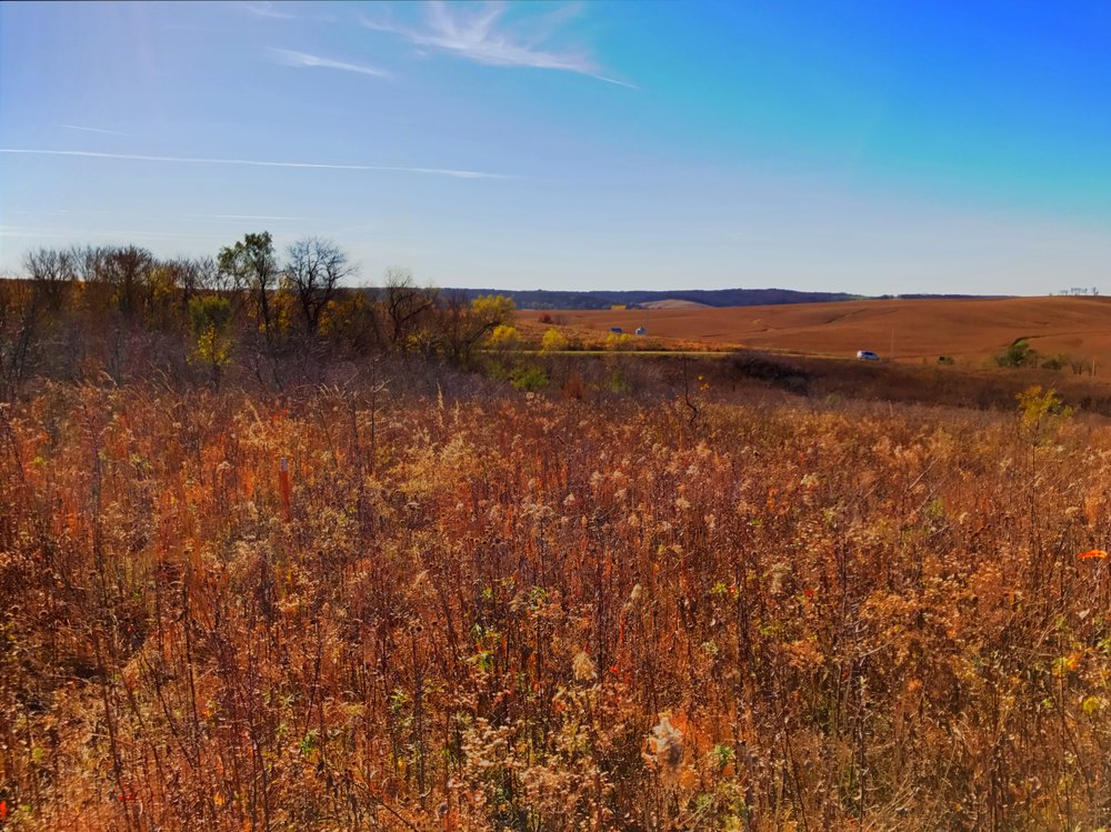 - Perspectives from nature,  at Sheeder Prairie, near Guthrie Center, November 8, 2016