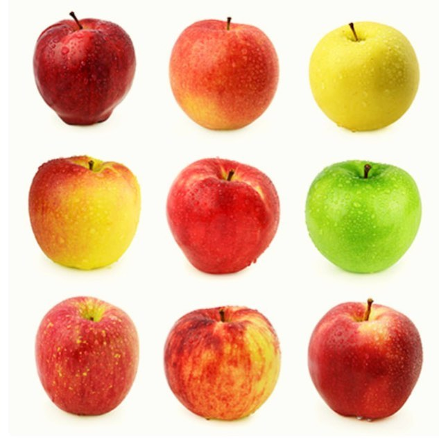 You really should eat an apple a day! Here's why: An apple a day might not keep the doctor away, but each sweet, crispy crunch could promote weight loss and support the body's efforts to combat disease 🍎🍏That's because apples are rich in fiber as well as phytonutrients and antioxidants. Or Pick up a cold pressed juice with apple in it 🍎 @caffestreets @metriccoffee @strokirksalon @cherrycirclecaa . . . . .  #vegan #holistic #mindbodygram #healthyfood #instafood #glutenfree #vegetarian #paleo #superfoods #selfcare #iamwellandgood #veganeats #youarewhatyoueat #medicinal #holisticliving #fitfood #rawfood #strongandradiant #radiantlyraw #rawjuice #rawvegan #drinkyourvitamins #coldpressedjuice #madeinchicago #madewithlove #apple #appleaday #resetyoureternalclock
