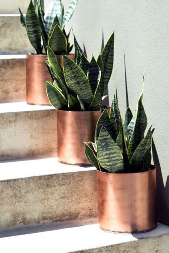 Fonte: Pinterest - não achei qual o autor da foto, nem dos vasos!