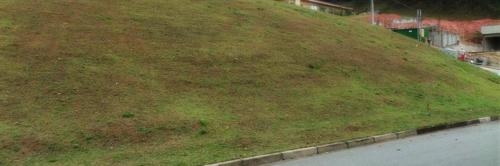 O terreno em aclive possui uma série de dificuldades para implantação e contenção.