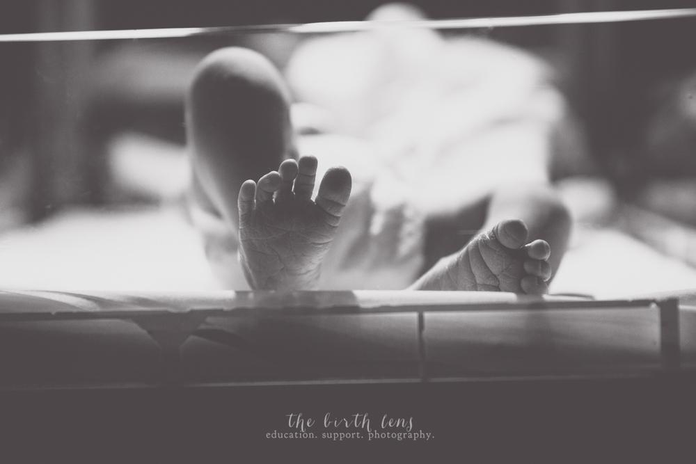 baby-4123.jpg
