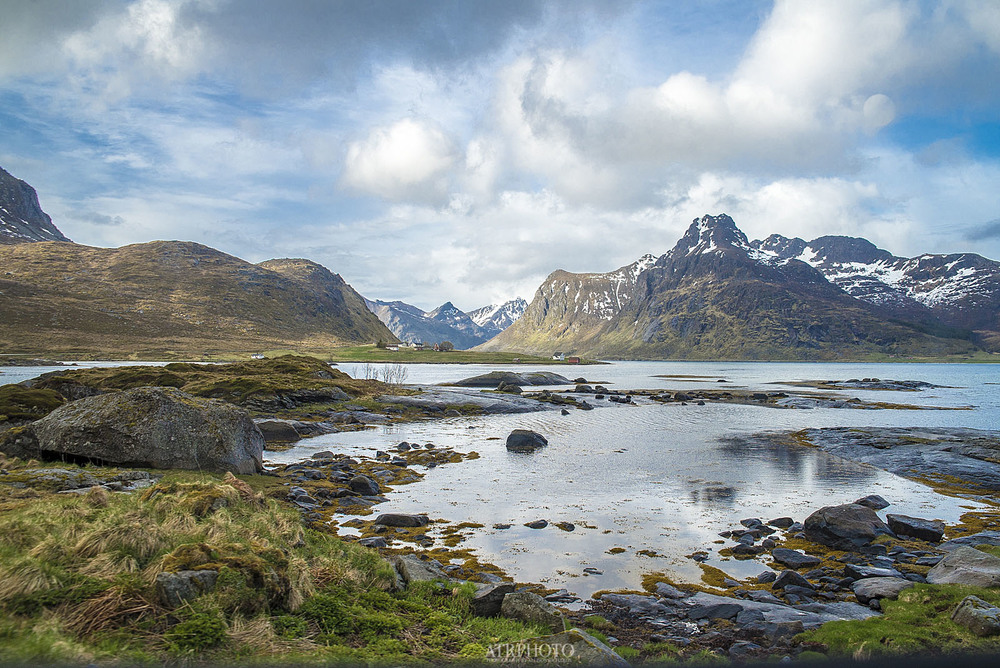 A common sight in Lofoten