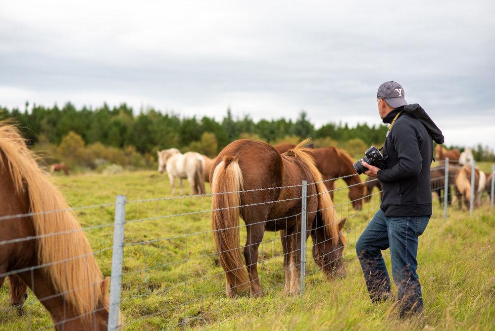 Carmine & Horse.JPG