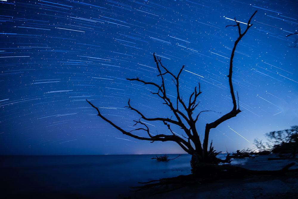 Night at Botany Bay.jpg