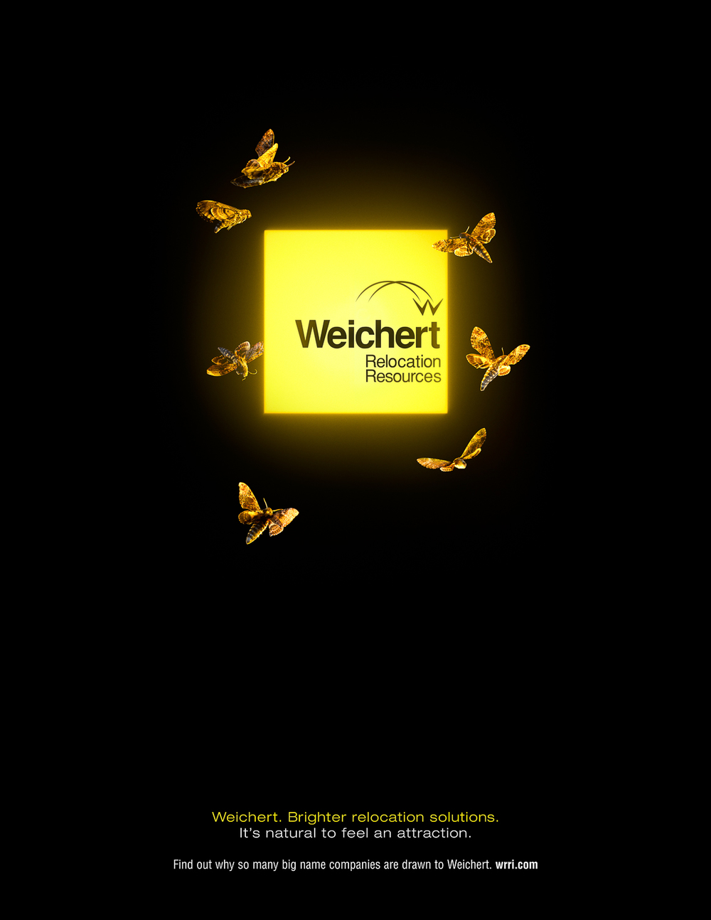 Weichert_Ad_Moths.jpg