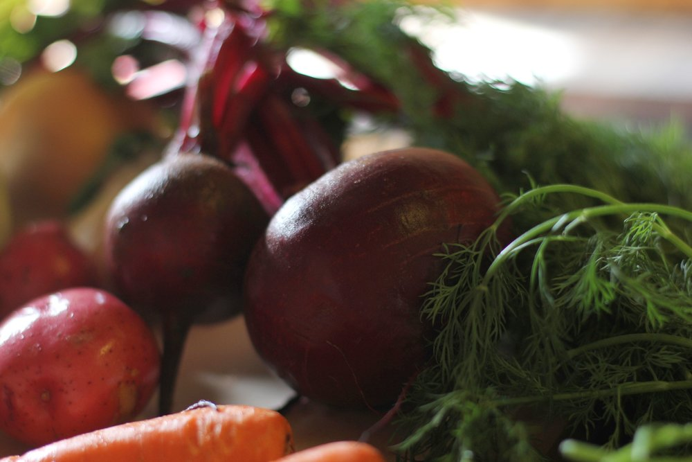 borscht.jpg
