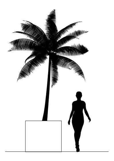 escala humana