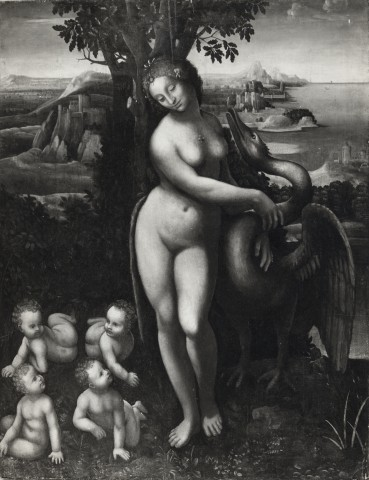 Giampietrino  Giampietrino. Leda and the Swan. From the collection of C. Gibbs, London.