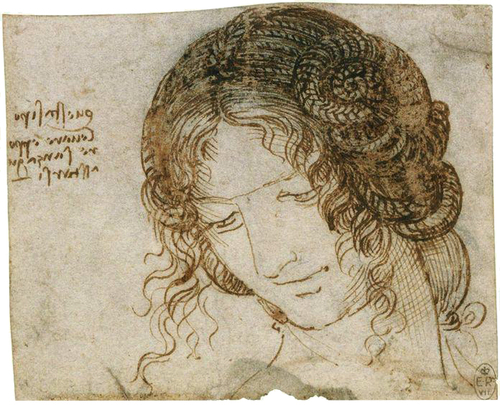 The head of Leda  c. 1505 - 1506  Pen and Ink  9.2 x 11.2 cm  Royal Collection Trust, Widsor castle, London, U.K