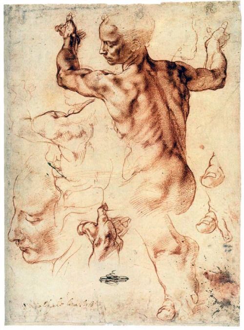 Michelangelo Buonarroti  Studies for the Libyan Sibyl  1511-12