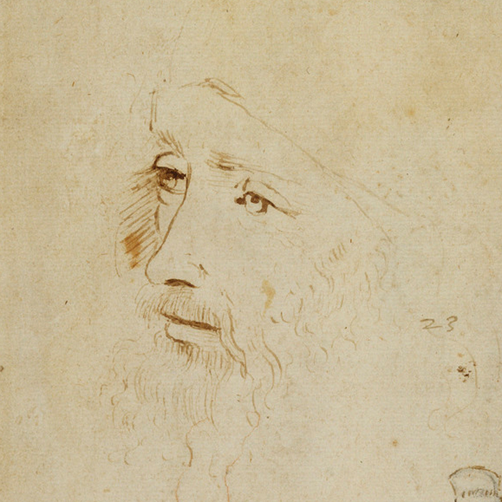 Leonardo-da-Vinci---Drawings---Possible-self-portrait.jpg