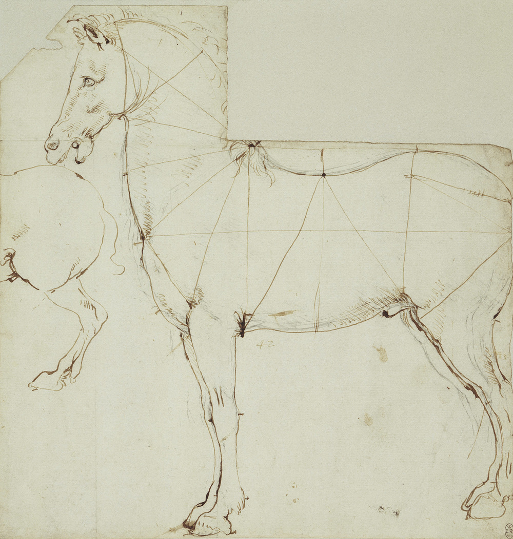 Leonardo da Vinci - Drawings - Animals - Horse Proportion.jpg