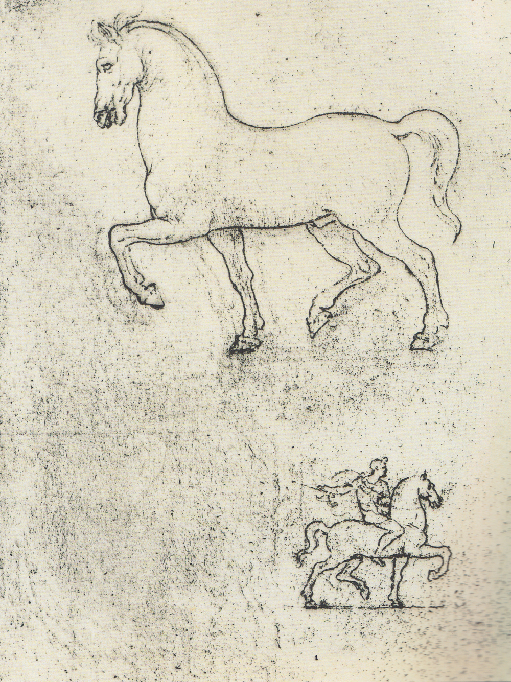 Leonardo da Vinci - Drawings - Animals - Horses - 07.jpg