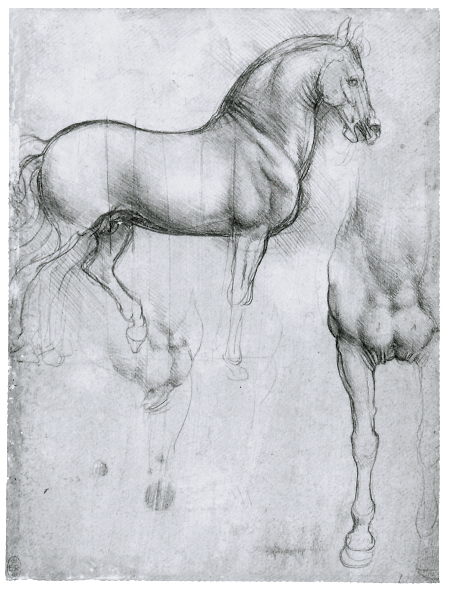 Leonardo da Vinci - Drawings - Animals - Horses 05.JPG