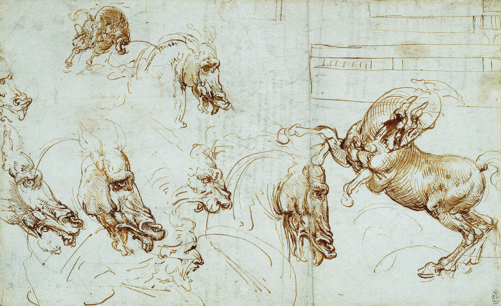 Leonardo da Vinci - Drawings - Animals - Sketches-horses-lion-men-profile.jpg