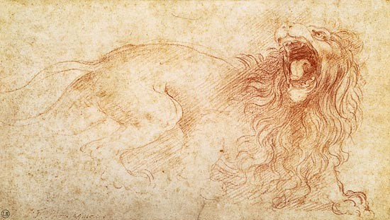 Leonardo da Vinci - Sketch of a roaring lion.jpg