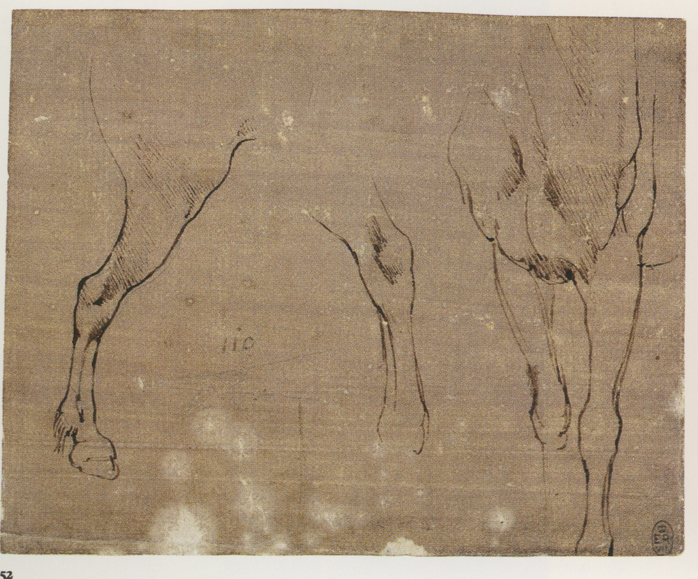 Leonardo-da-Vinci---Drawings---Animals---Horse Studies 1479 b.jpg
