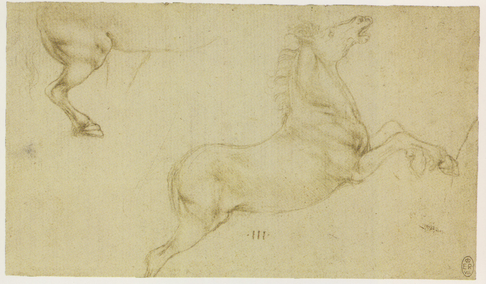 Leonardo-da-Vinci---Drawings---Animals--Horse Studies 1480.jpg