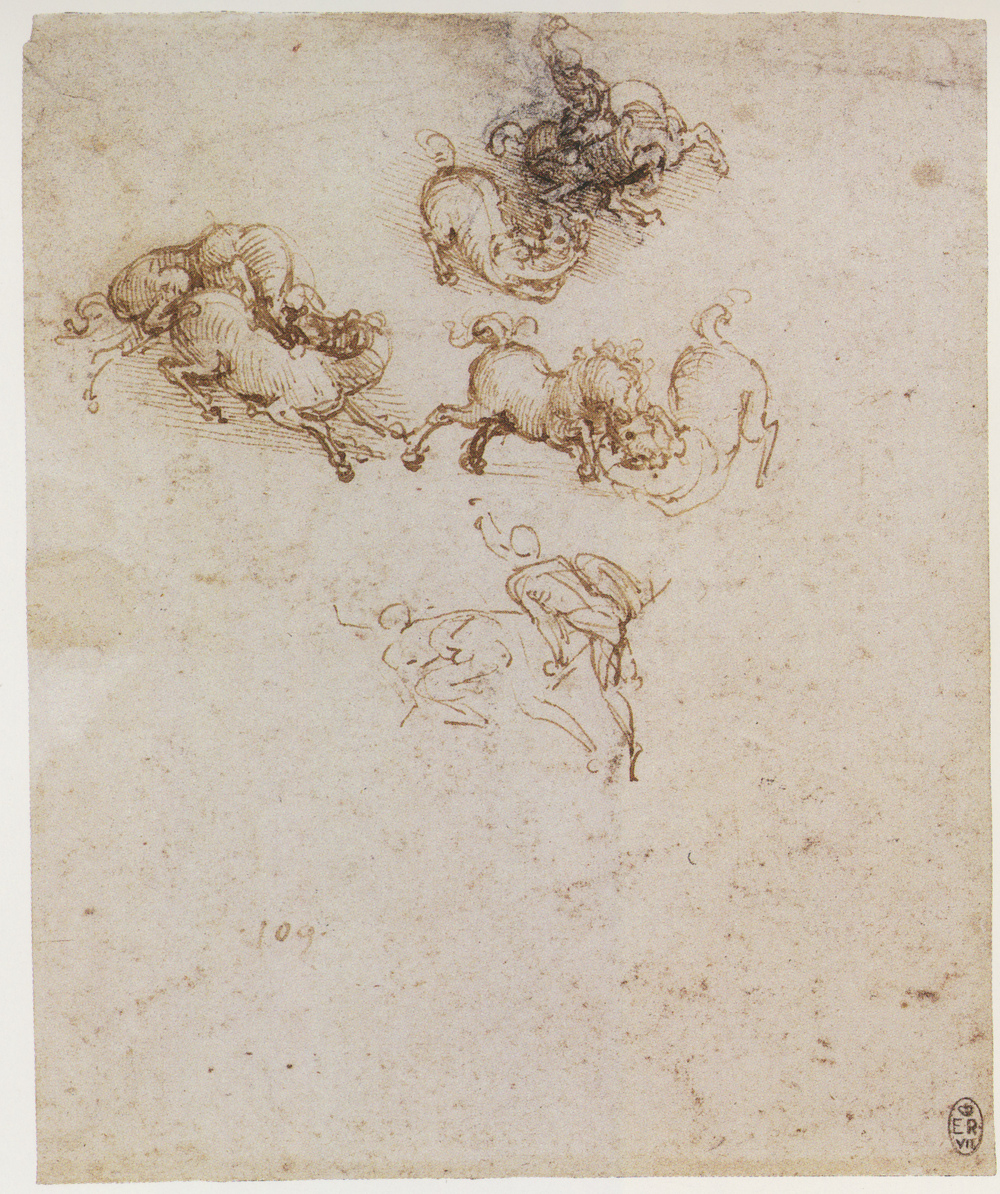 Leonardo-da-Vinci---Drawings---Animals--Horse Studies 1503-1505.jpg
