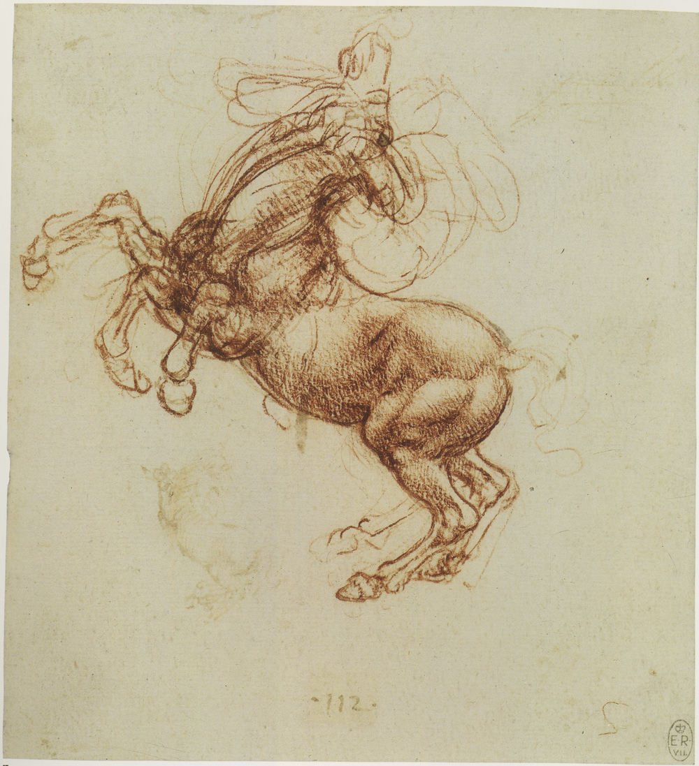 Leonardo-da-Vinci---Drawings---Animals--Horse Studies 1505 b.jpg