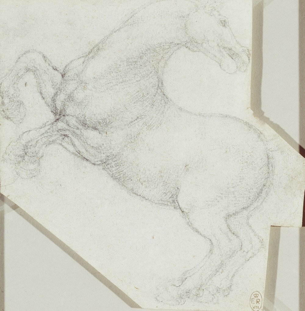 Leonardo-da-Vinci---Drawings---Animals---Horses---06.jpg