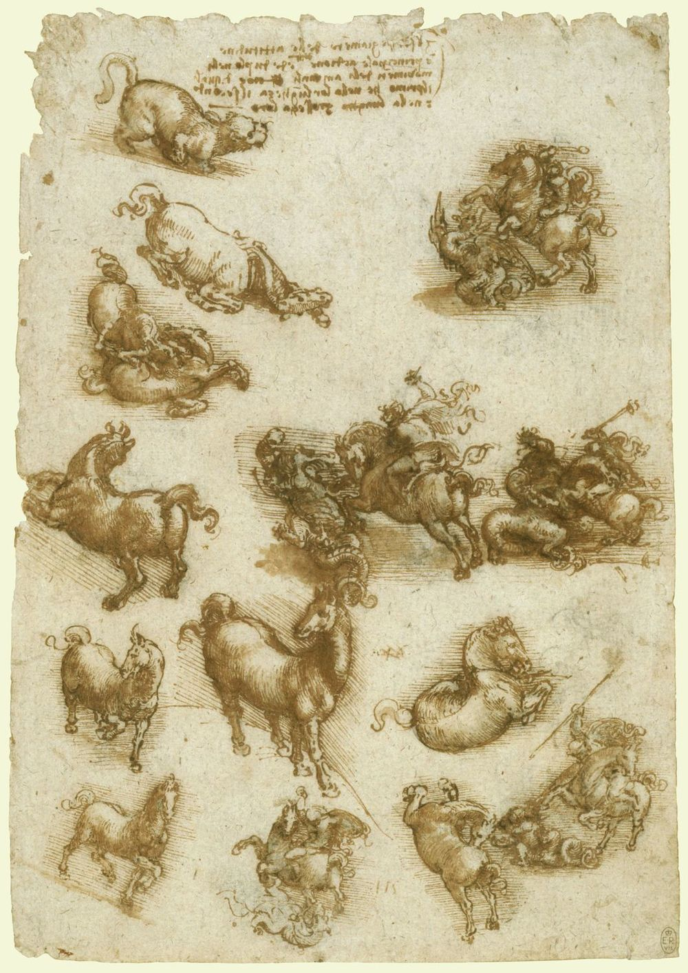 Leonardo-da-Vinci---Drawings---Animals---Horses--11.jpg