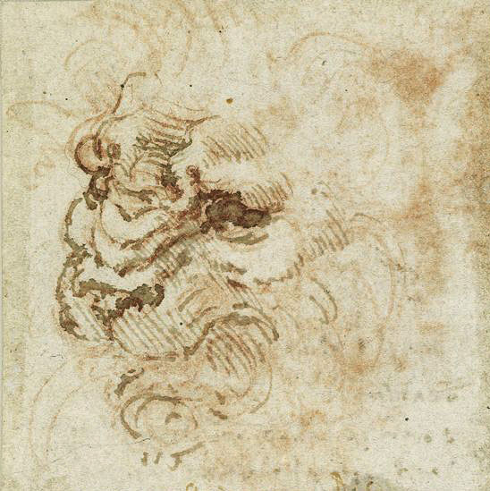 Leonardo-da-Vinci---Drawings---Animals---Lion face.jpg