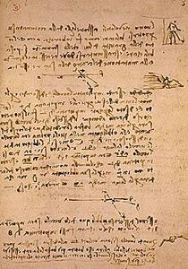davinci-codex-flightofbirds-15-gravityonbirds.jpg