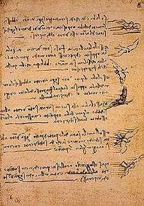 davinci-codex-flightofbirds-13-wingandwind.jpg