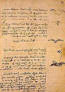 davinci-codex-flightofbirds-07-flightmechanics.jpg