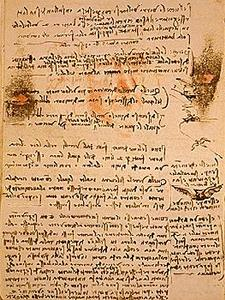 davinci-codex-flightofbirds-06-wingbeats.jpg