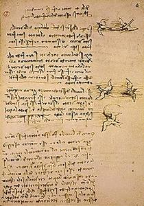 davinci-codex-flightofbirds-04-birdflight.jpg