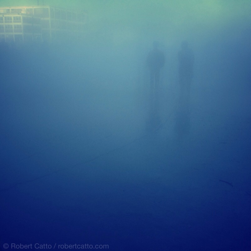 Biennale of Sydney, Cockatoo Island: Fujiko Nakaya's Living Chasm